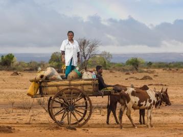 les patients de dr. Françoise n'ont qu'une seule option de Transport pour arriver jusqu'à son centre de santé de base. un sarety tiré par deux zébus peut atteindre une vitesse maximale de 2.4 kilomètres par heure, cinq heures par jour. certains viennent de villages éloignés de 102 kilomètres.