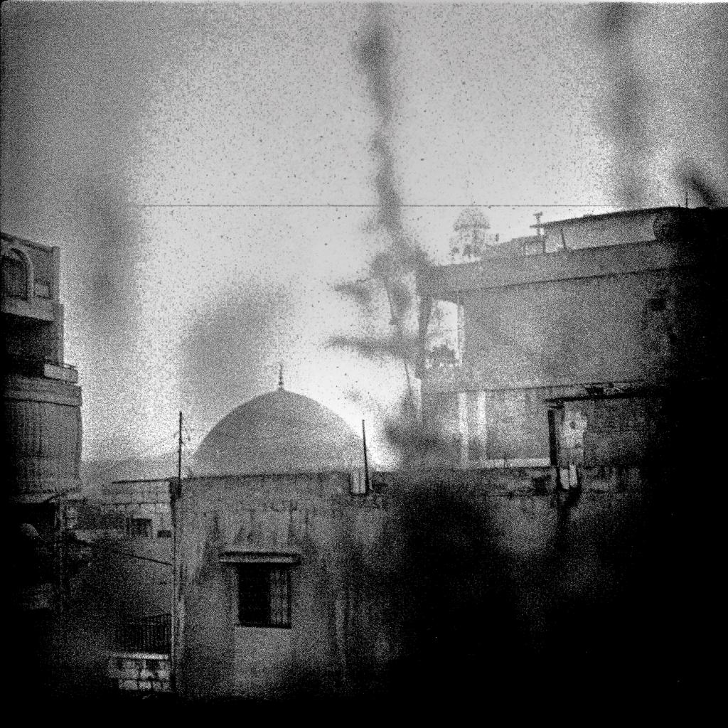 © haddadToni